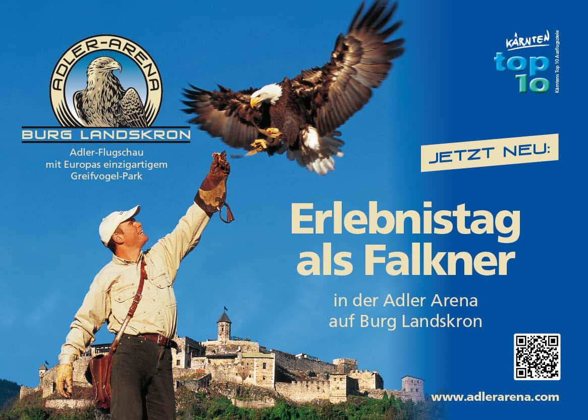 Ein Erlebnistag als Falkner in der Adlerarena Burg Landskron! © Adlerarena