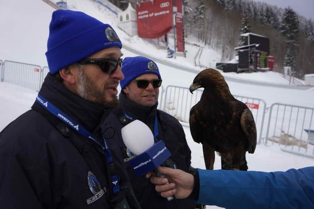 Falkner mit Adler Im Interview auf Kulm Flugschanze