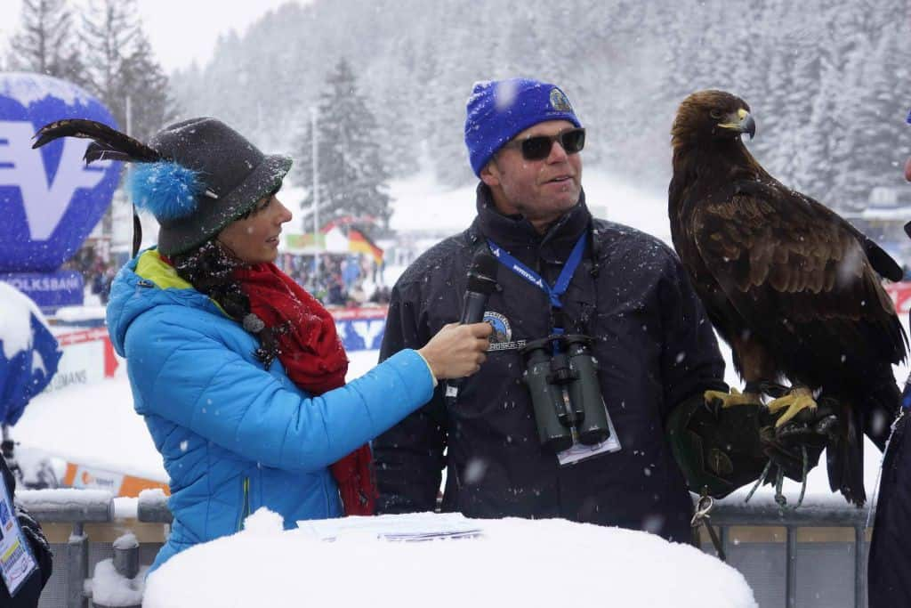 Adler am Kulm - Interview mit Falkner