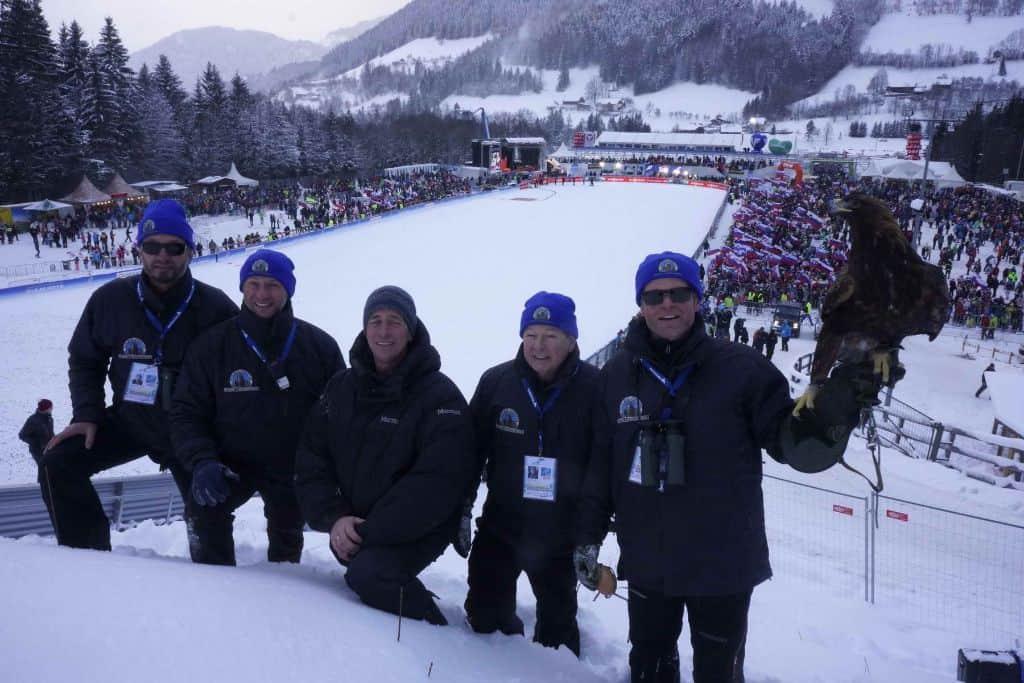 Adlerarena Landskron auf Skisprungschanze Kulm mit Greifvogel