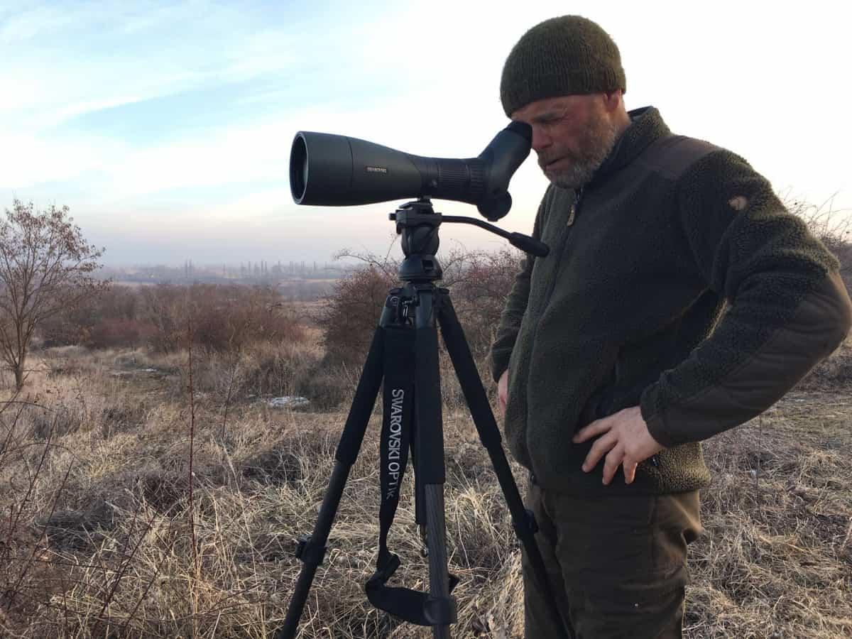 Franz Schüttelkopf versucht Maja unversehrt auf die Adler Arena zurückzubringen, denn sie ist wichtig für das internationale Arterhaltungsprogramm dieser geschützten Vögel. © privat