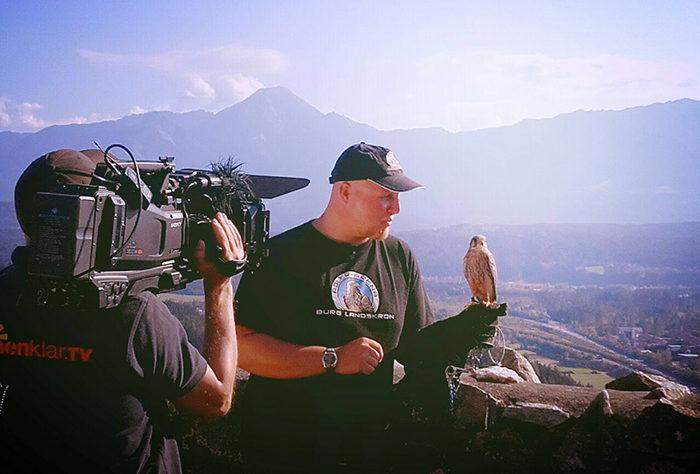 Dreh Sonnenklar TV - Falkner mit Turmfalke von Adlerarena Landskron