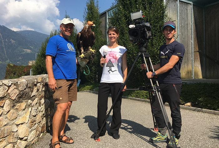 Servus Krone TV mit Steinadler und Falkner der Adlerarena Burg Landskron